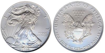 2008 Silver Eagle